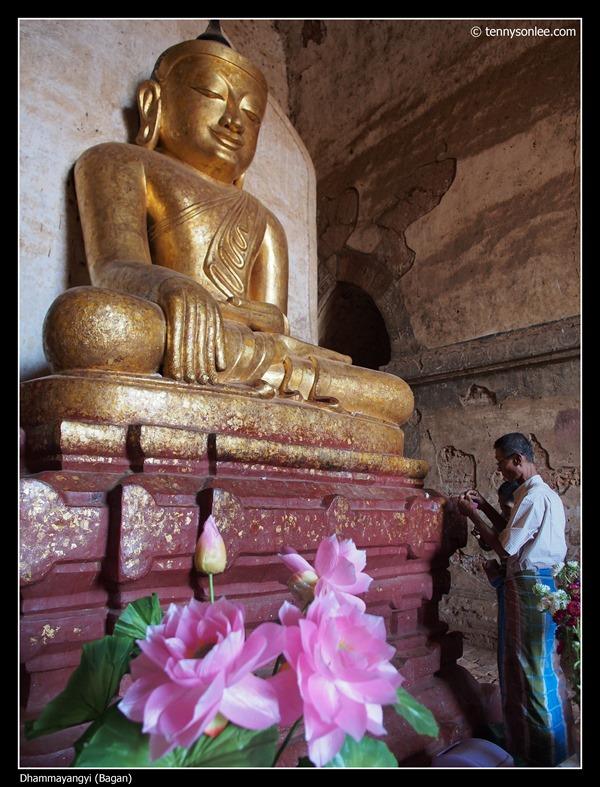 Dhammayangyi (5)