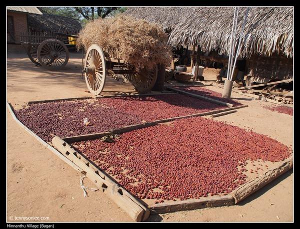 Minnanthu Village (1)