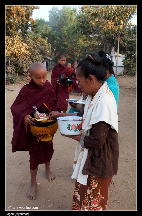 Sangha of Bagan (13)