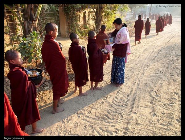 Sangha of Bagan (14)