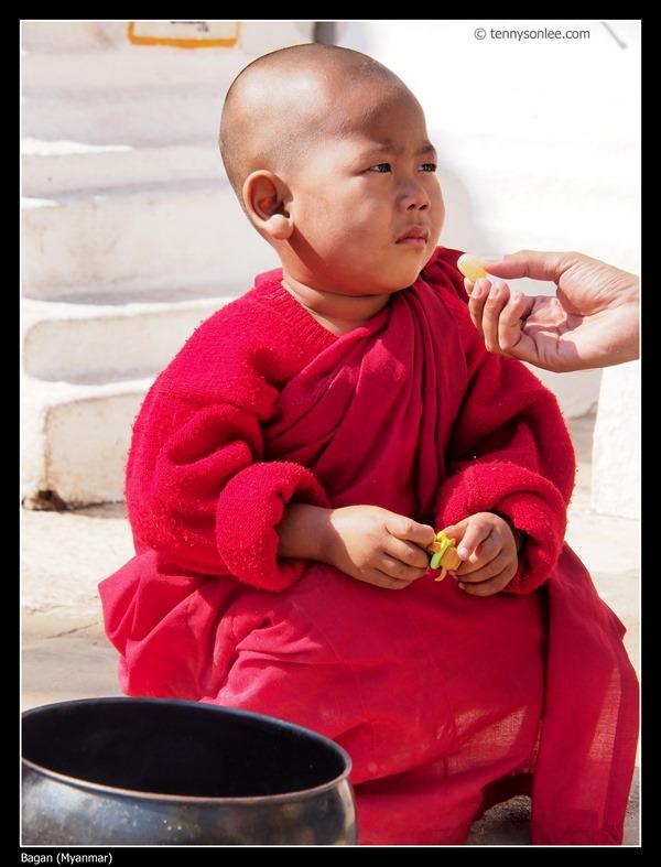 Sangha of Bagan (1)