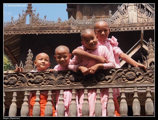 Sangha of Bagan (9)