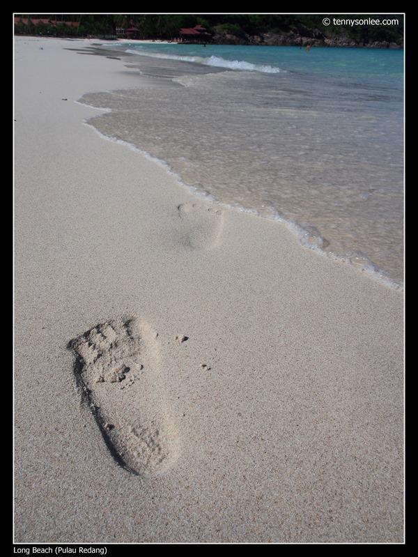 Pulau Redang Long Beach (4)