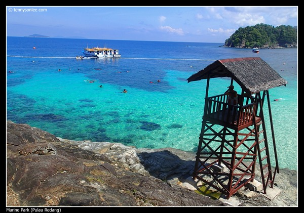 Pulau Redang Marine Park (5)