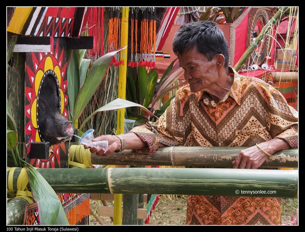 100 Tahun Injil Masuk Toraja (10)