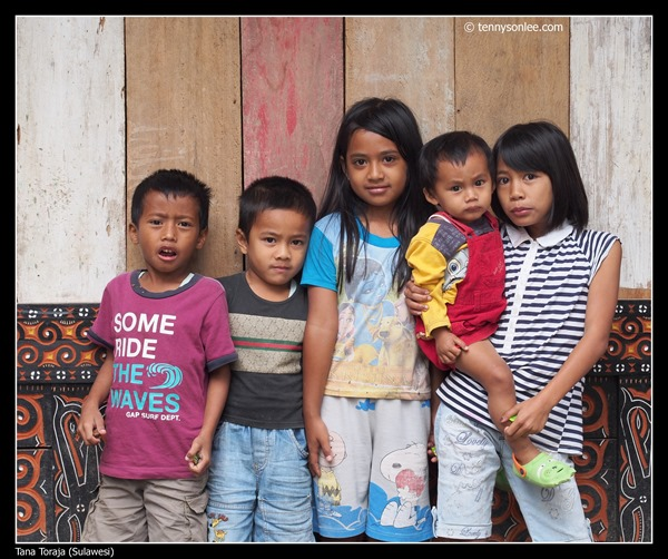 Faces of Tana Toraja (5)