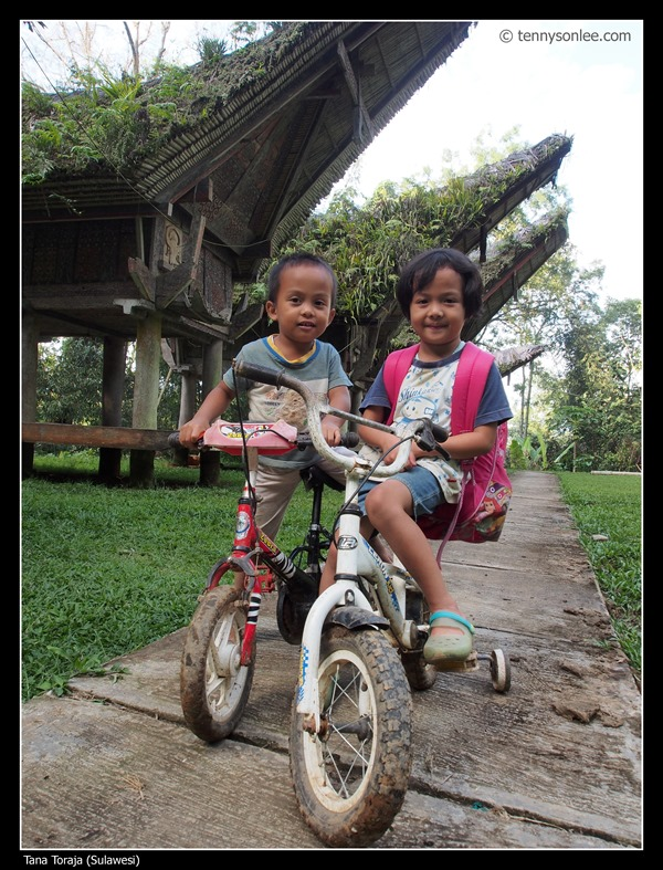 Kids riding in front of Alang (Tana Toraja)