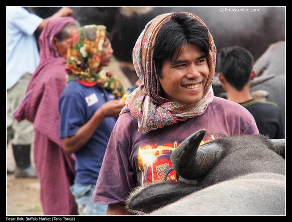 Pasar Bolu Buffalo Market (Tana Toraja) (14)