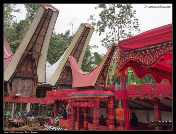 Tana Toraja Funeral Ceremony (9)