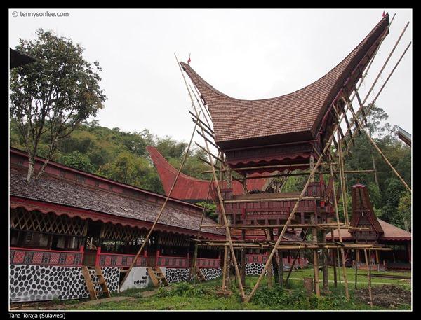 Tongkonan and Alang (5)