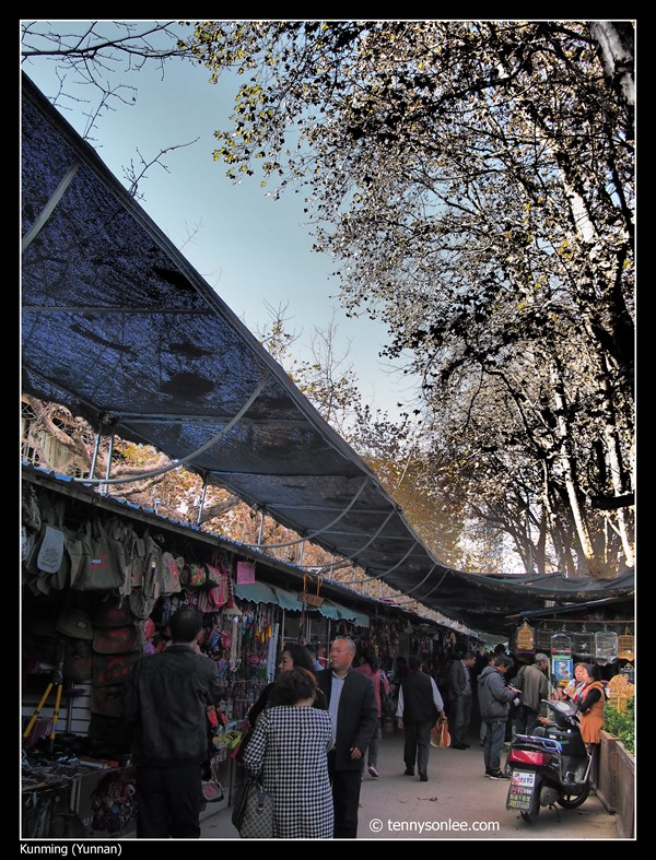 Kunming 花鸟市场