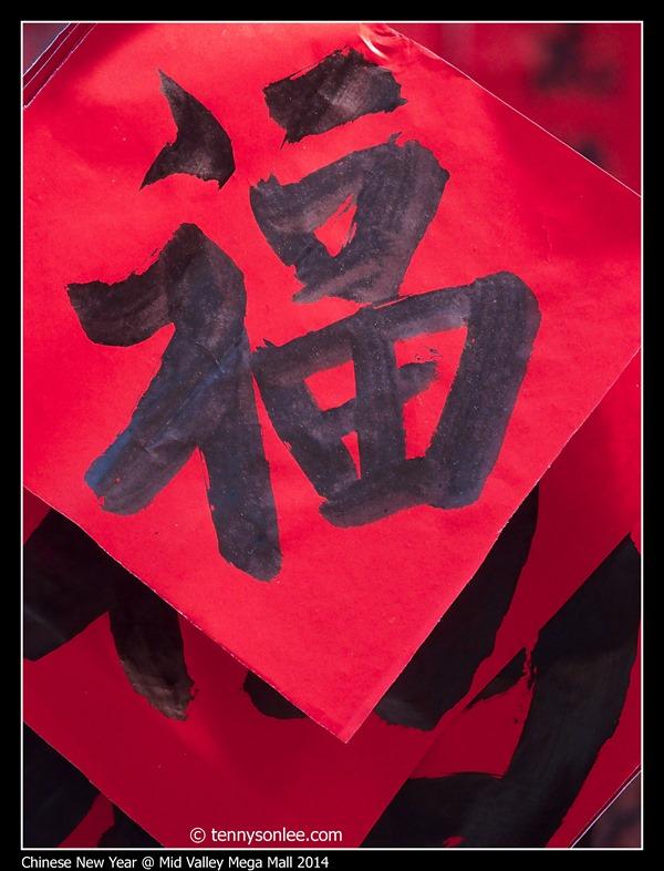 Chinese New Year 2014 (2)