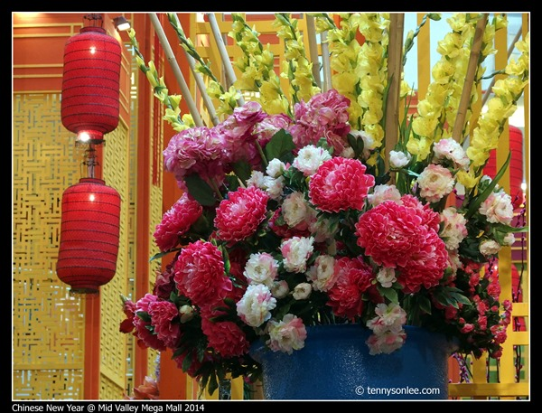 Chinese New Year 2014 (5)