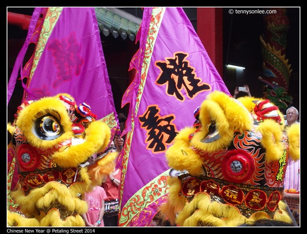 Chinese New Year 2014 (9)