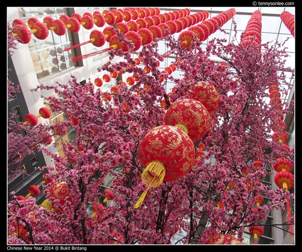 Pavilion KL Chinese New Year 2014 (5)