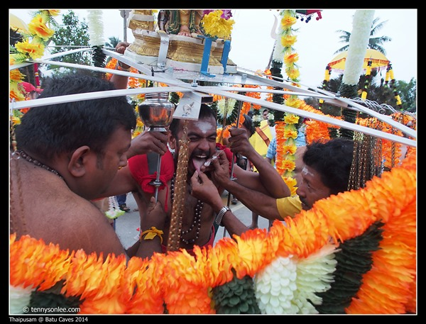 Thaipusam at Batu Caves 2014 (1)