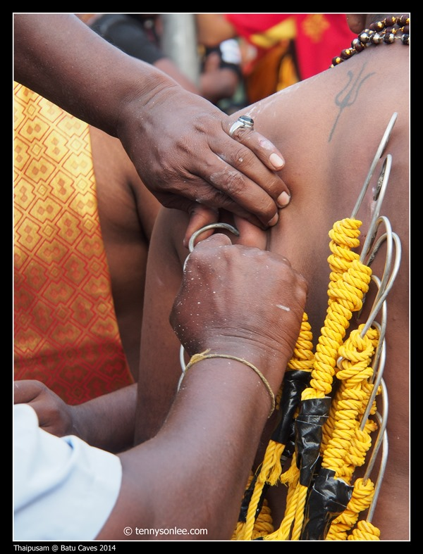 Thaipusam at Batu Caves 2014 (4)