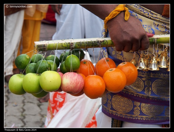 Thaipusam at Batu Caves 2014 (6)