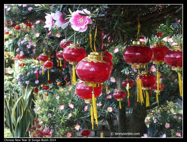 Chinese New Year Flora at Sungai Buloh 2014 (1)