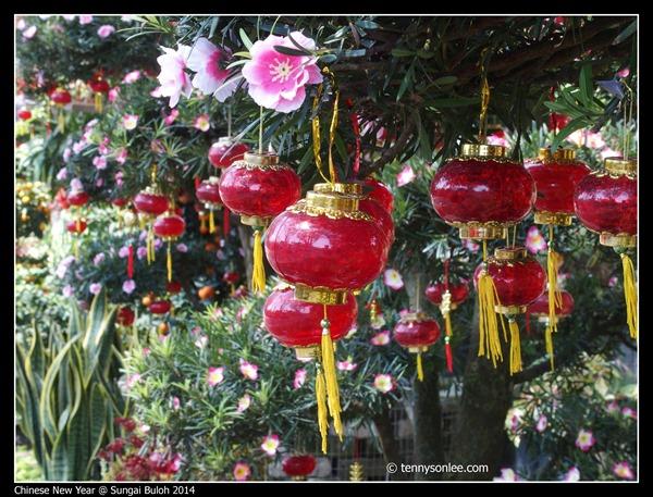 Chinese New Year Flora at Sungai Buloh 2014 (1)
