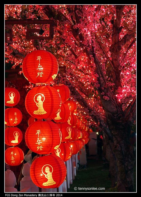 FGS Dong Zen Monastery 佛光山东禅寺 2014 (13)