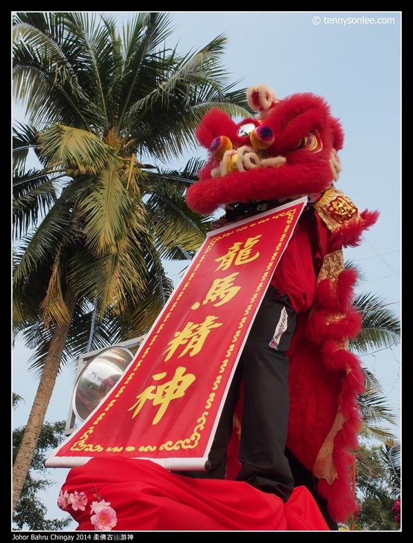 Johor Bahru Chingay 2014 柔佛古庙游神 (31)
