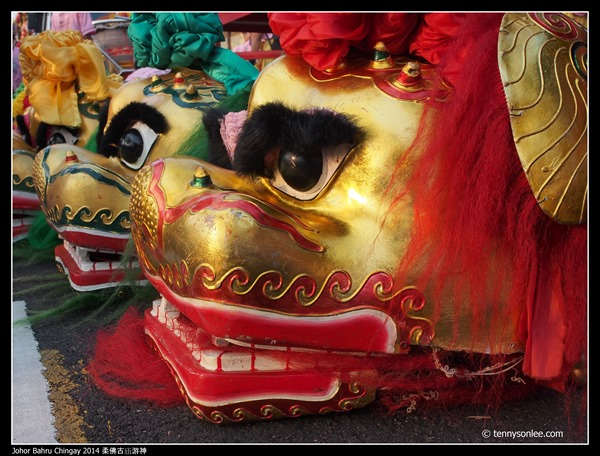 Johor Bahru Chingay 2014 柔佛古庙游神 (38)