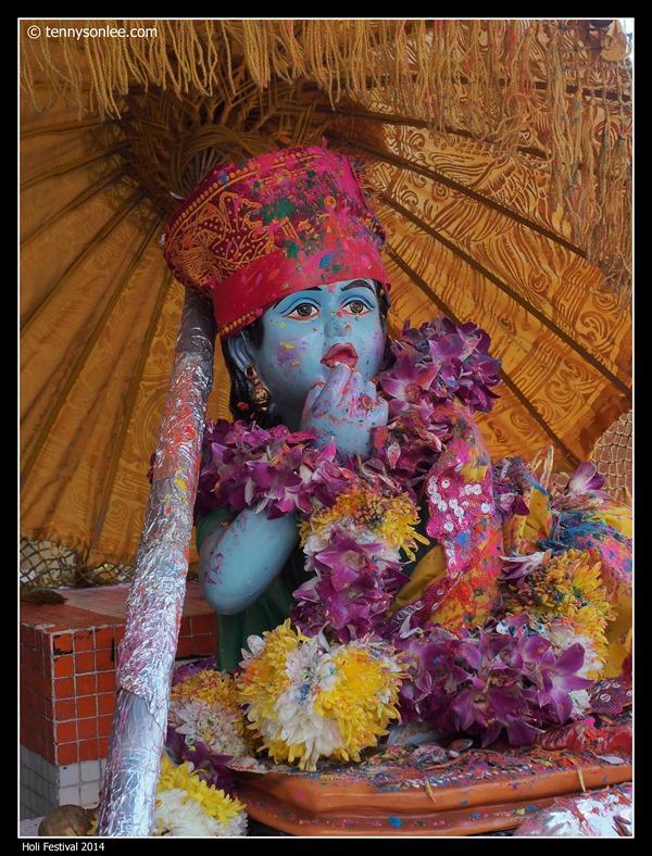 Holi Festival 2014 (21)