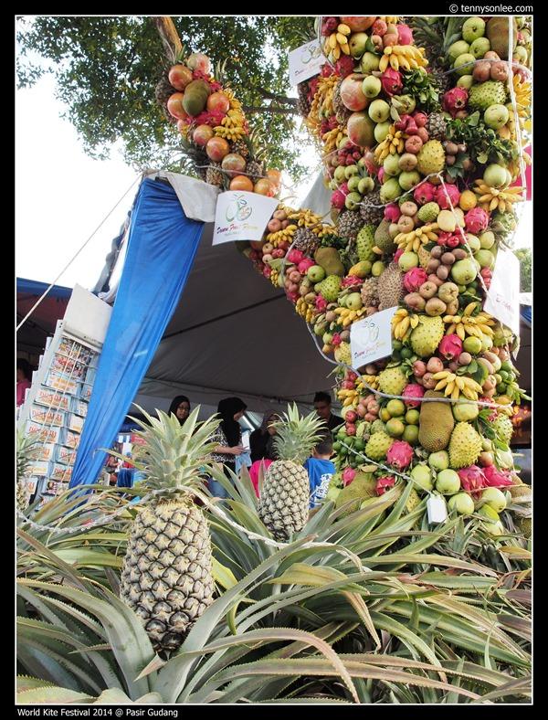 Pasir Gudang World Kite Festival 2014 (11)