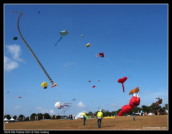 Pasir Gudang World Kite Festival 2014 (15)