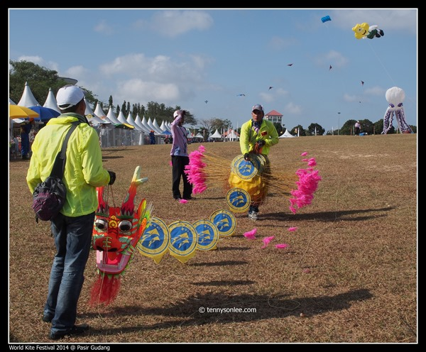 Pasir Gudang World Kite Festival 2014 (16)