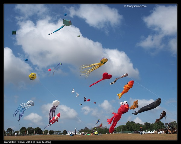 Pasir Gudang World Kite Festival 2014 (17)