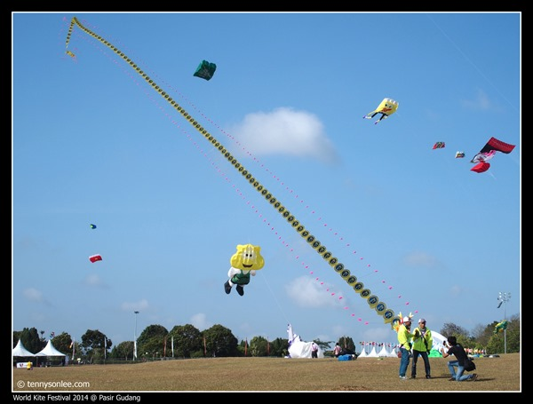 Pasir Gudang World Kite Festival 2014 (22)