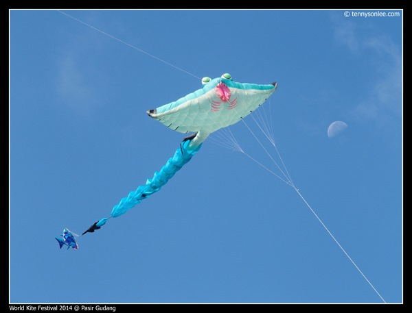 Pasir Gudang World Kite Festival 2014 (25)