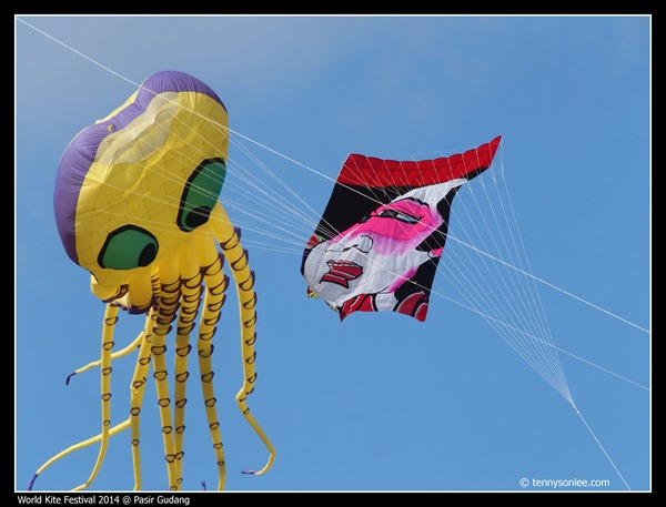 Pasir Gudang World Kite Festival 2014 (26)