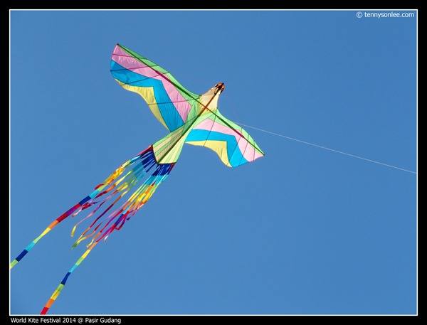 Pasir Gudang World Kite Festival 2014 (27)