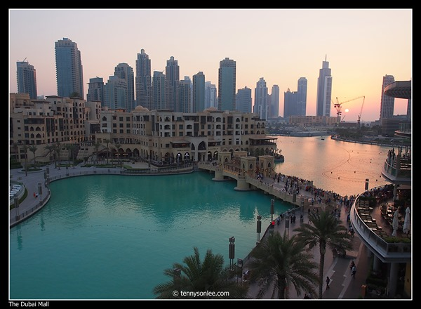 The Dubai Mall (4)